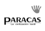 logo_0032_Capa 25